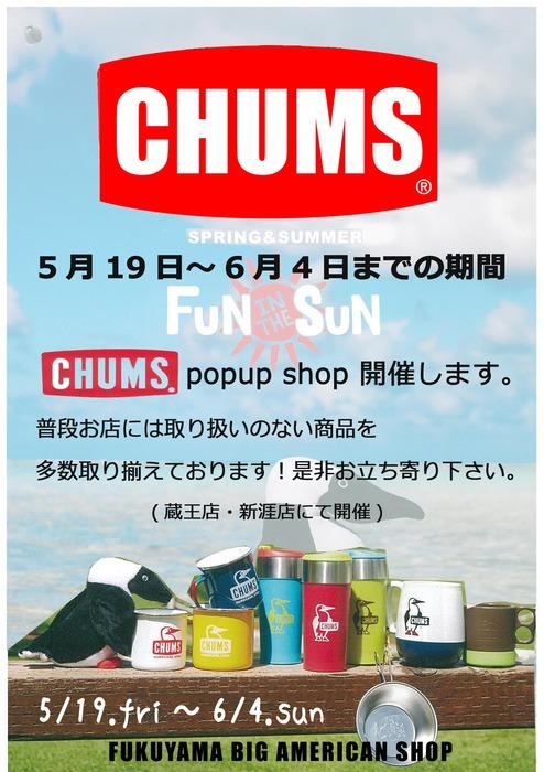 chums.popup.jpg